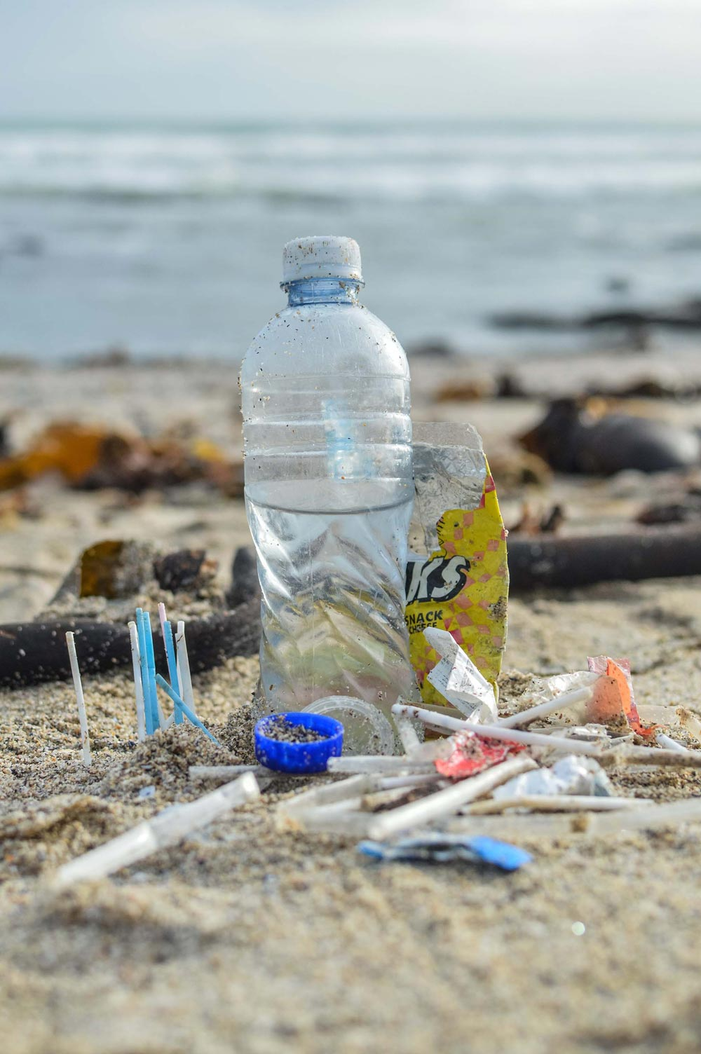 Plastic Free July 2019