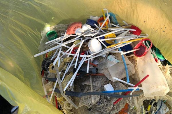 #PlasticFreeMzansi cleanup