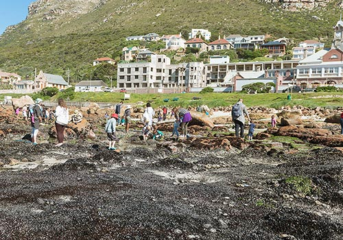 Beach clean up at Surfers Corner