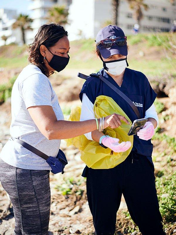International Coastal Cleanup Day - Teamwork