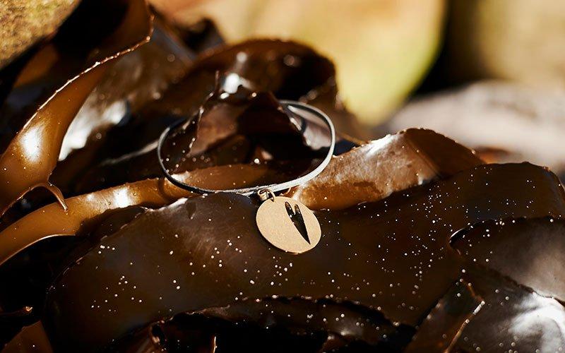 Fine silver bracelet on a piece of ocean kelp.