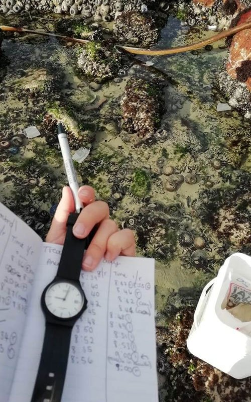 Hand holding a notebook, pen and watch with rock pools in the background.