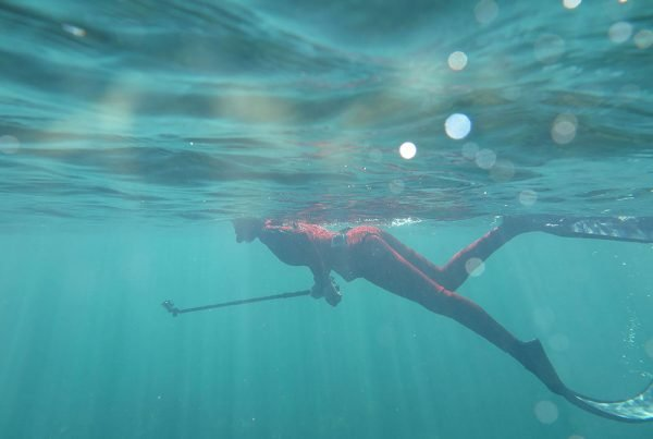 Diver in flippers submerged in the ocean.
